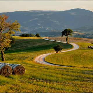 Agriturismi nelle Marche