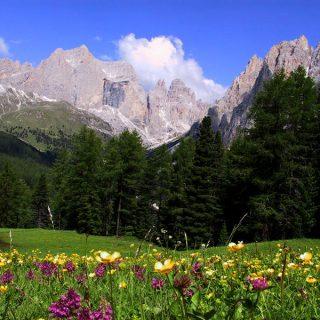 Agriturismi in Trentino-Alto Adige